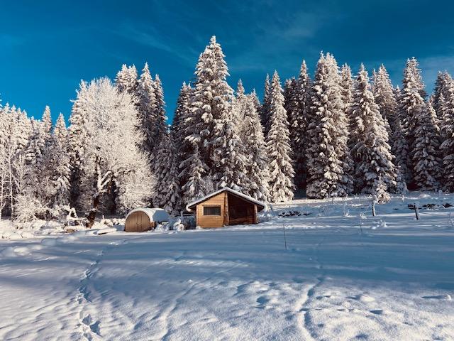 Hébergement insolite (cabane en bois)